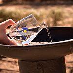 Aguas de Albacete celebra el Día Mundial del Agua.