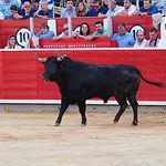 López Simón - Feria Taurina Albacete - 17-09-16