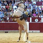 Diego Ventura en su primer toro.