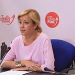 Ana Isabel Abengózar, portavoz Grupo Socialista.