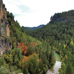 Las vistas que se observan a lo largo de toda la extensión del Parque constituyen un auténtico deleite para los sentidos.