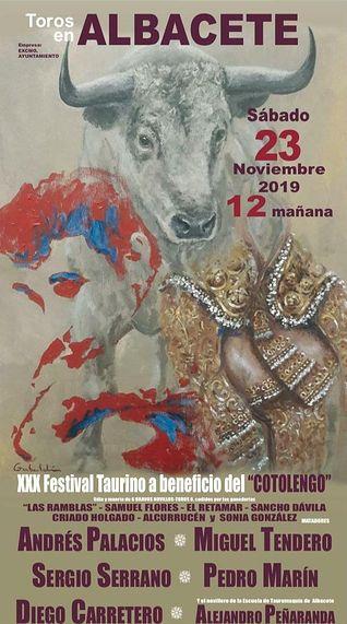 Cartel XXX Festival del Cotolengo.