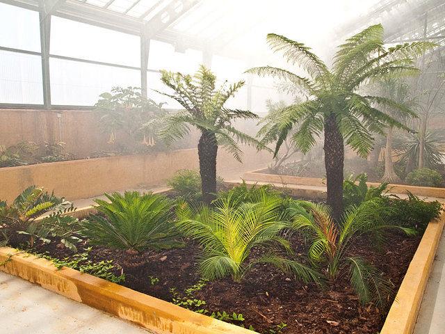 Zona del invernadero de exhibición situada en el Jardín Botánico de Castilla-La Mancha.