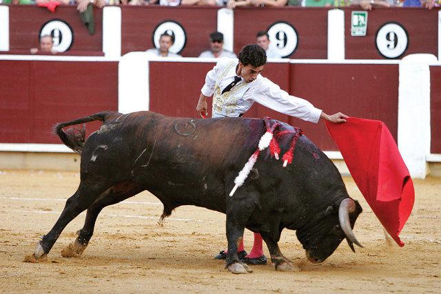 """Paul Abadía """"Serranito"""", en una faena a """"Pimento"""", de la ganadería de Samuel Flores, durante la pasada Feria de Albacete."""