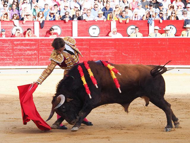 El Julli - Su primer toro - Feria Albacete - 17-09-16